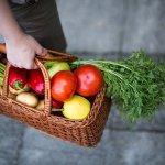 Aide aux repas, commissions et ou livraisons de courses